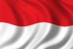 2011.5.3-Indonesia-flag