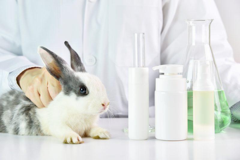 AnimalTesting